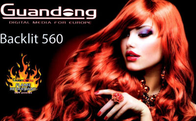 Picture of Guandong Intercast Premium Banner, Backlit